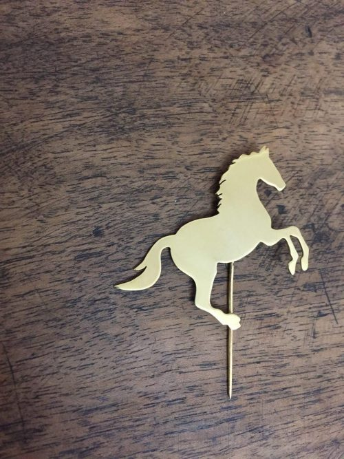 سنجاق سینه اسب